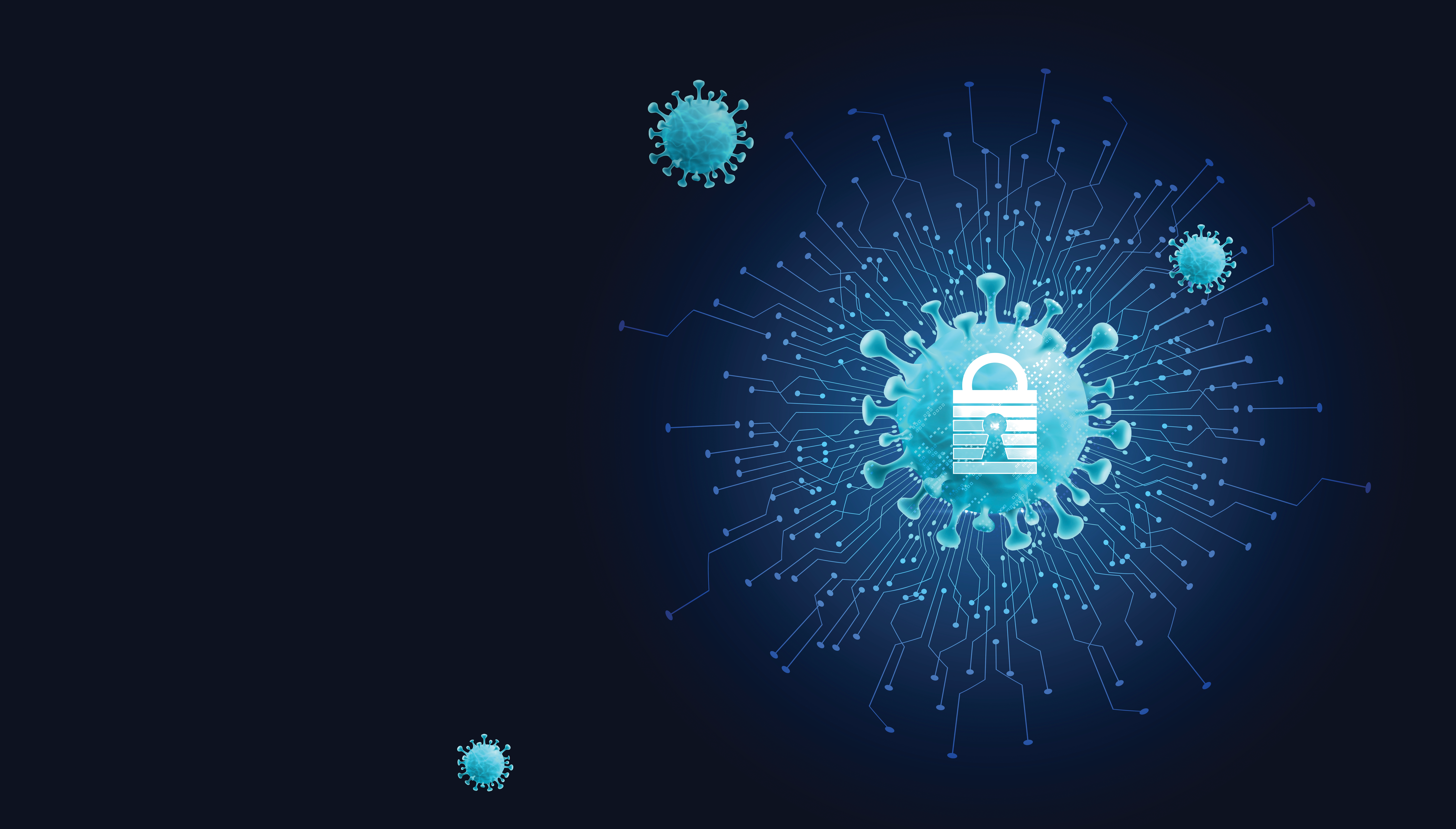 Information Security and Privacy Best Practices in the Age of Pandemic